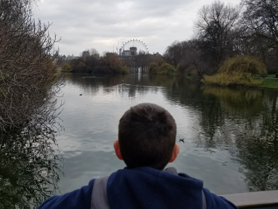Gazing Out At The London Eye