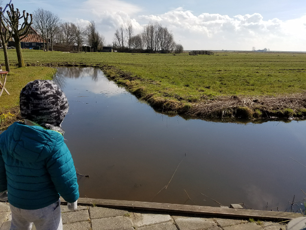 Boy looking at a canal outside Amsterdam